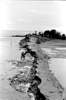 An embankment eroded by the Jamuna River, Bangladesh